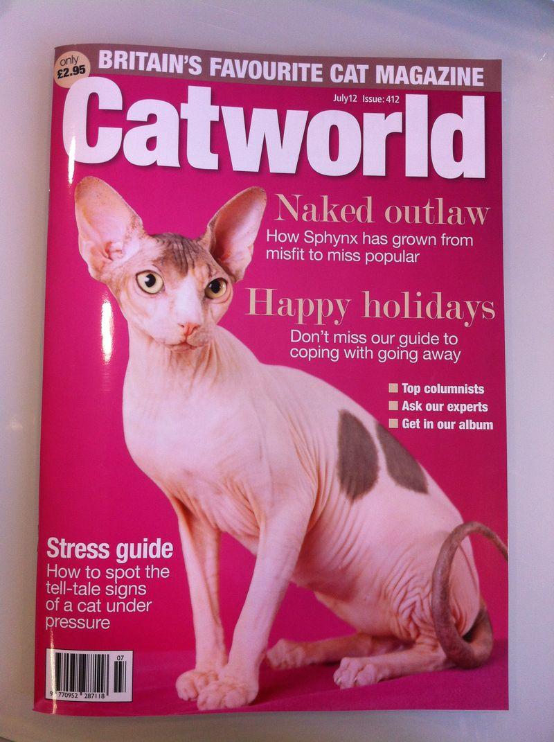 Catworld412