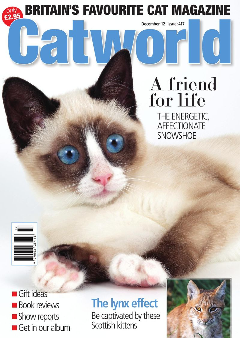 Cat Front Cover